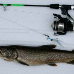 Above: A lake trout caught via jig during the 2012 season.